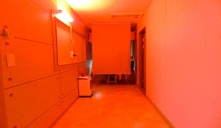 CIMG4616.jpg
